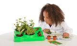 Plantkunde: Experimentele kas_