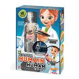 Het Menselijk Lichaam - Buki_