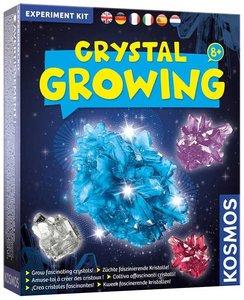 Groeiend Crystal experimenteerdoos