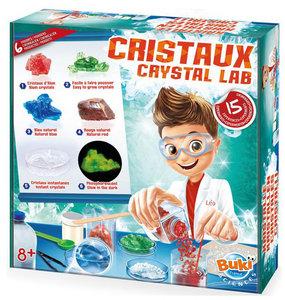 Kristallen lab 15 experimenten - Buki